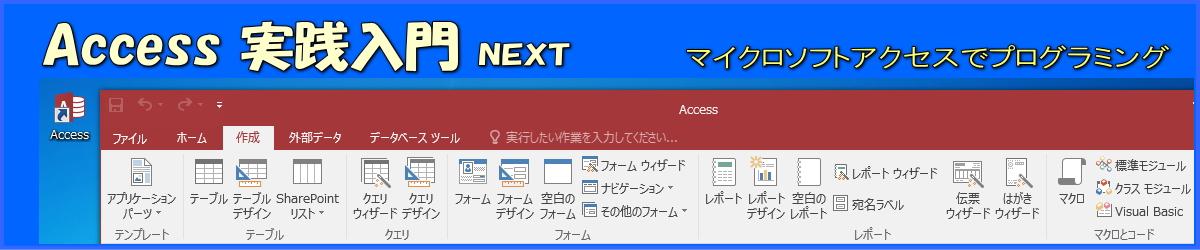 Access実践入門next